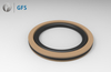 PXN - DAQ, Customized Piston Seal filled with PTFE NBR/FKM O-Ring
